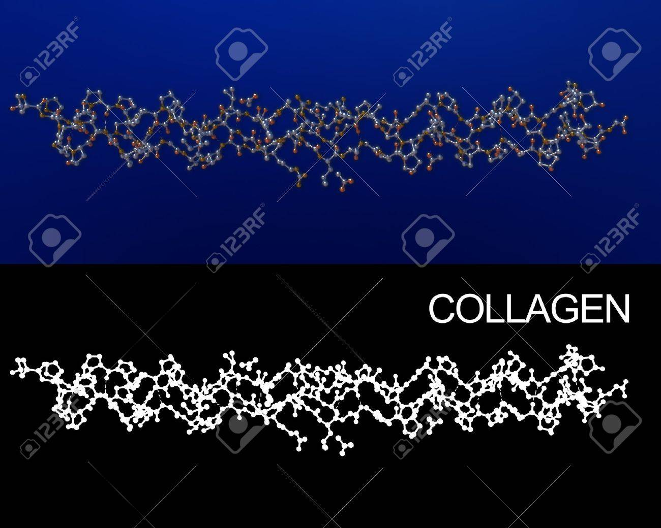Collagen crystal structure molecule 3D rendering. Alpha channel added for easy extraction. Exact representation of collagen 1BKVA0 from protein data bank. - 8966916