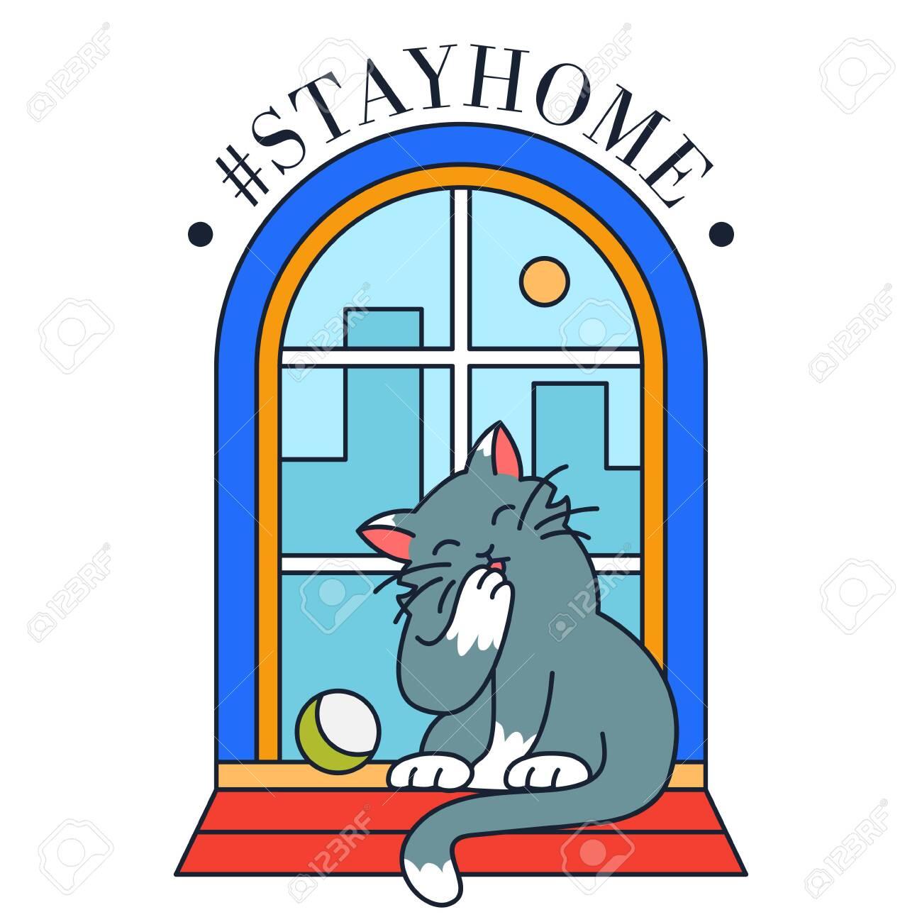 Cat in window under glass cap. Stay home, coronavirus quarantine, self isolation - 144477626