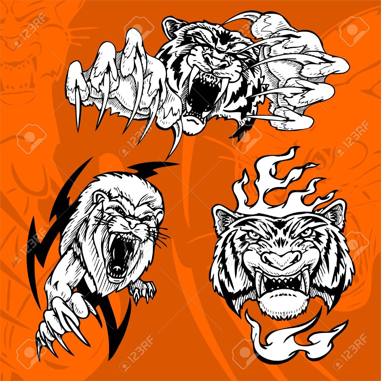 Tiger and Lion.Predators. Stock Vector - 7230730
