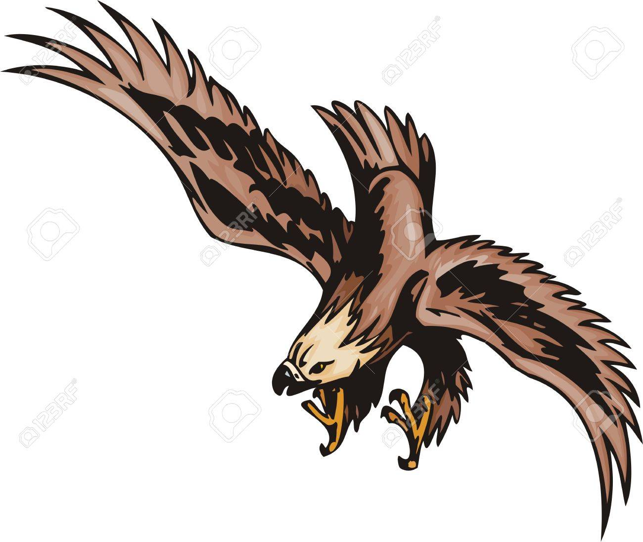 the eagle with brown plumage attacks extraction predatory birds