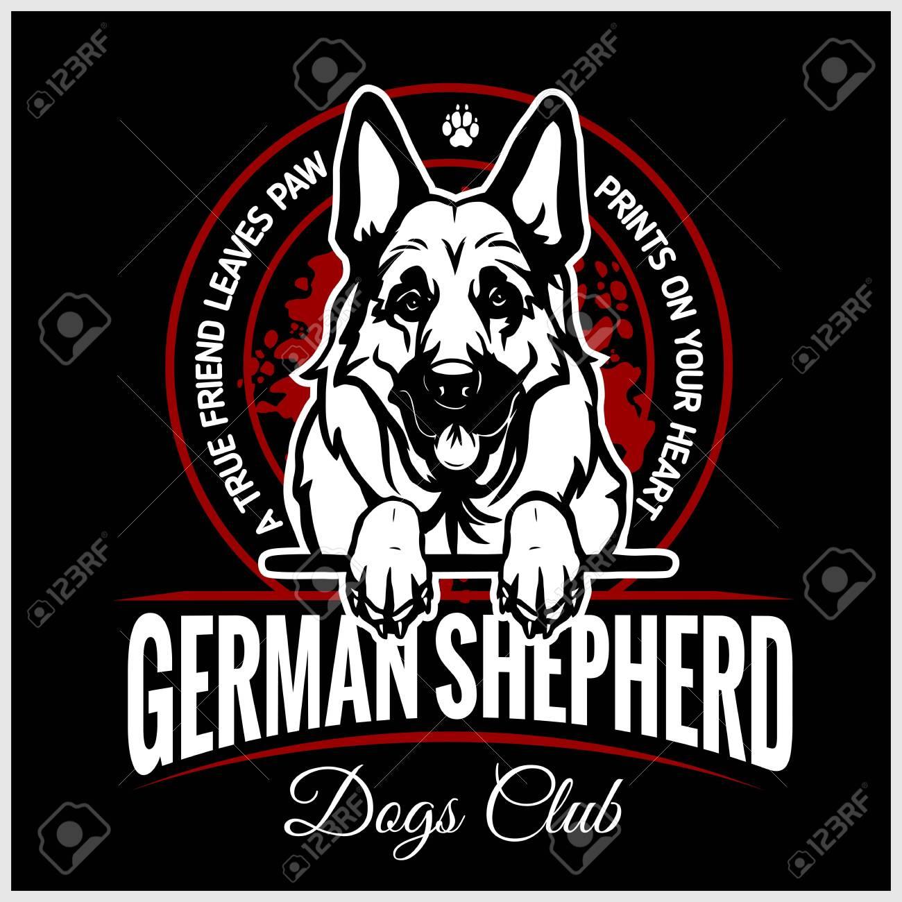 German Shepherd - vector illustration for t-shirt, logo and template badges - 123075285