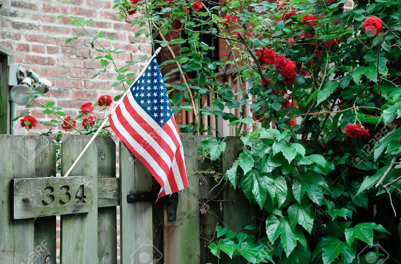 american flag in backyard garden stock photo picture and royalty