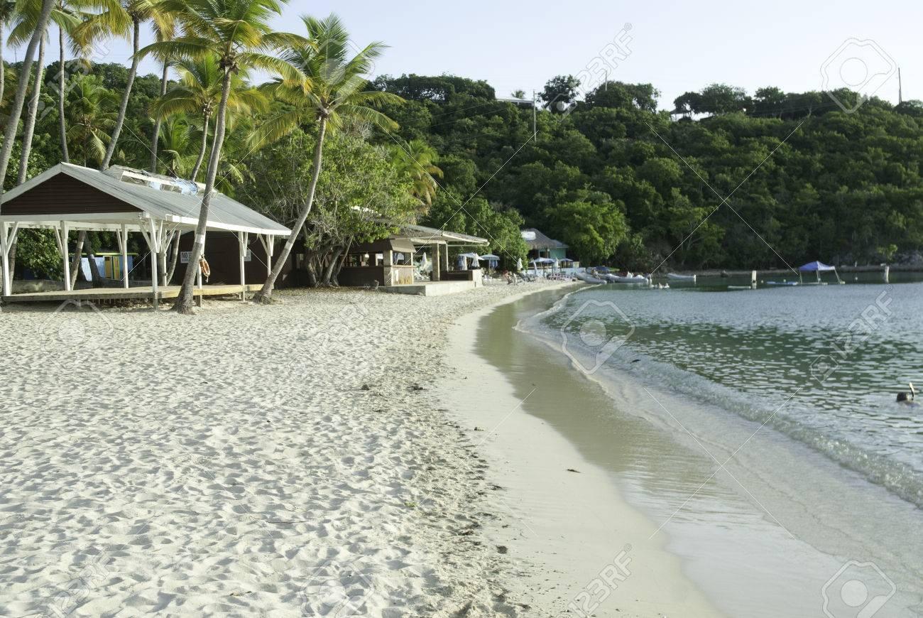 水島、米領バージン諸島の新婚旅...