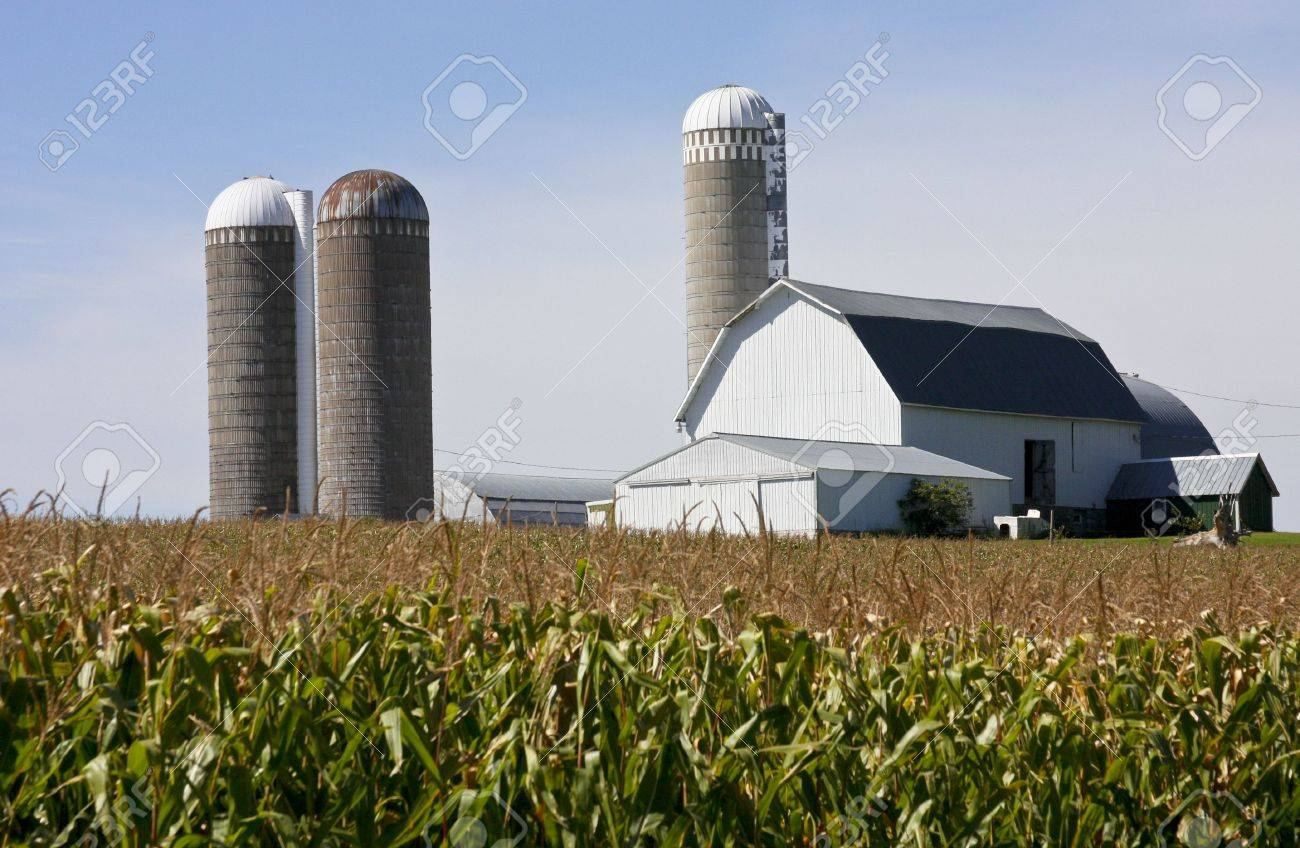 silo images & stock pictures. royalty free silo photos and stock ... - Barns Coloring Pages Farm Silos