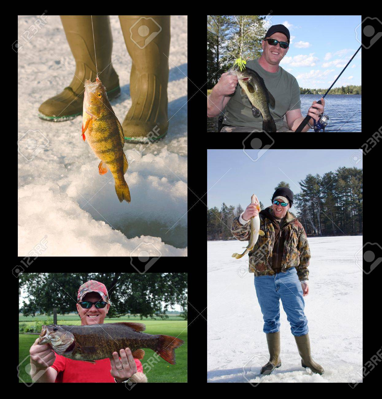 fishing collage with fisherman catching and holding freshwater fish Stock Photo - 8381973