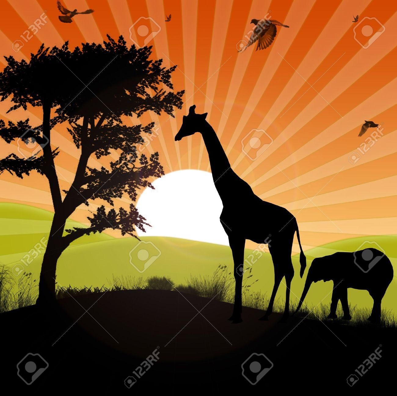 safari animals silhouette in an afican sunset landscape Stock Photo - 8712042