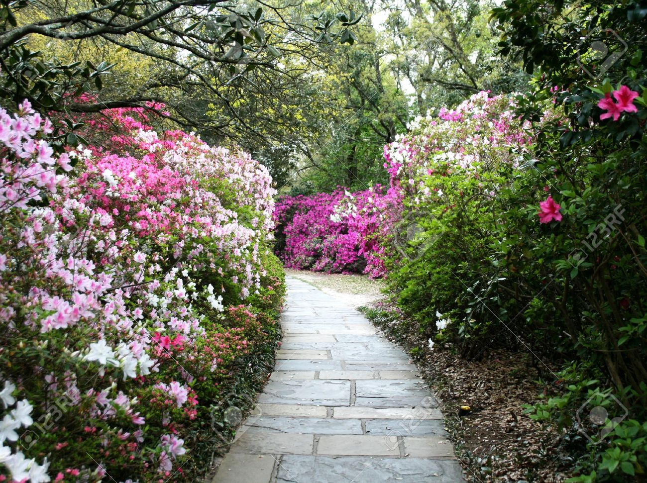 Flower Garden Path flower garden path - house decoration design ideas is the new way