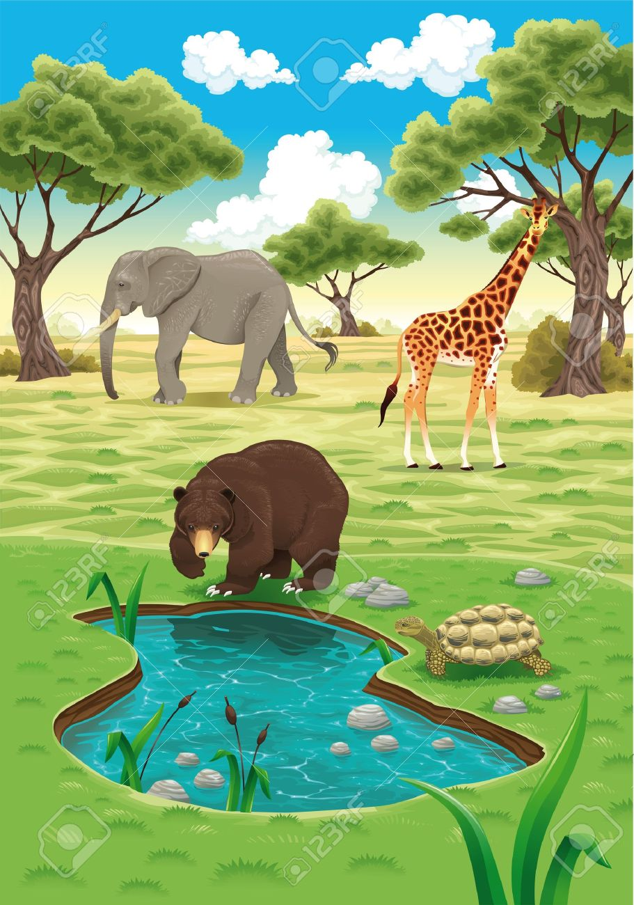 Animals in the nature realistic illustration. Stock Vector - 12455015