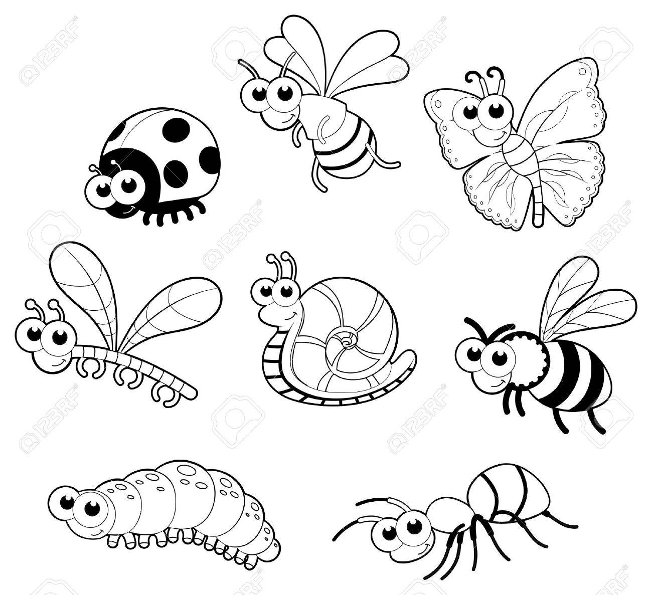 Bugs   1 snail. Stock Vector - 13535782
