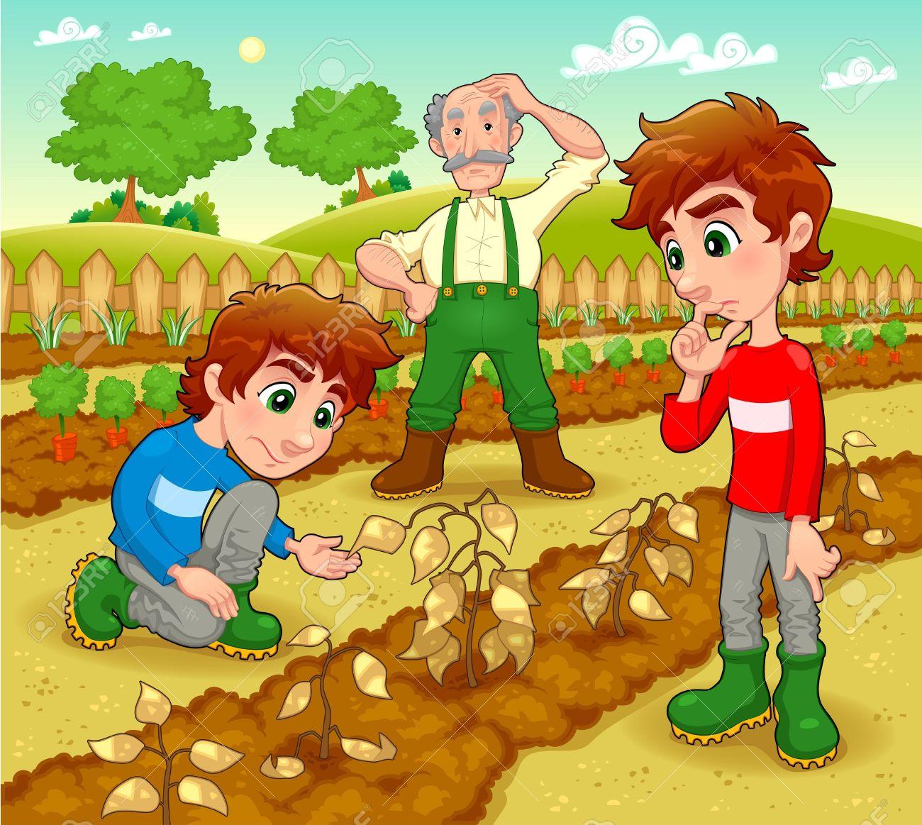 Vegetable garden kids drawing - Vegetable Garden Funny Scene In The Vegetable Garden