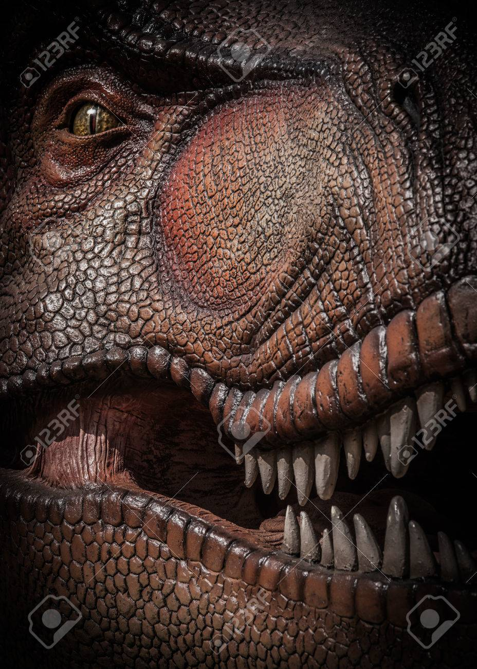 Tyrannosaurus Rex - 45355063