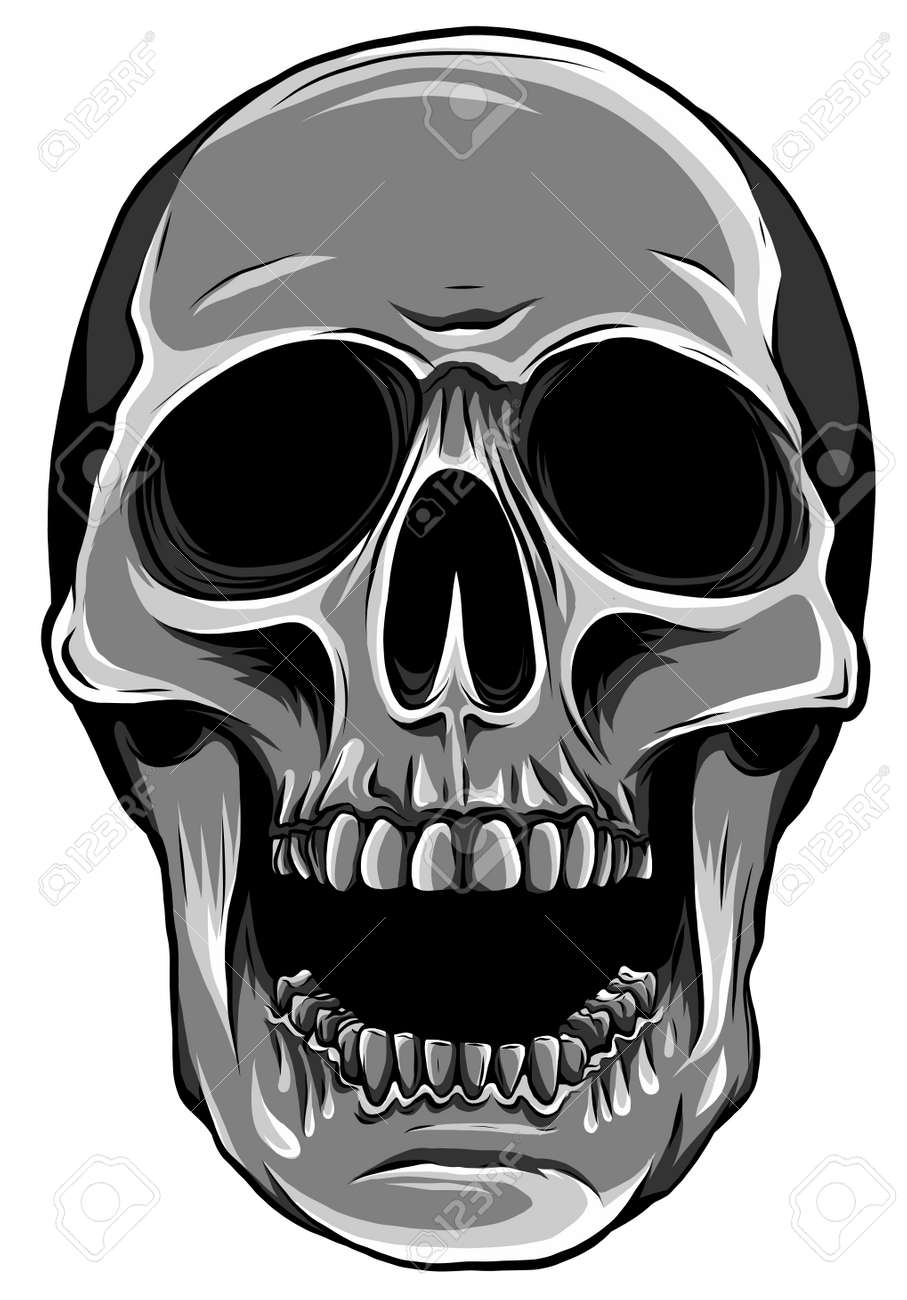 monochromatic Realistic red skull. vector Illustration for designer on a white background. - 167235556
