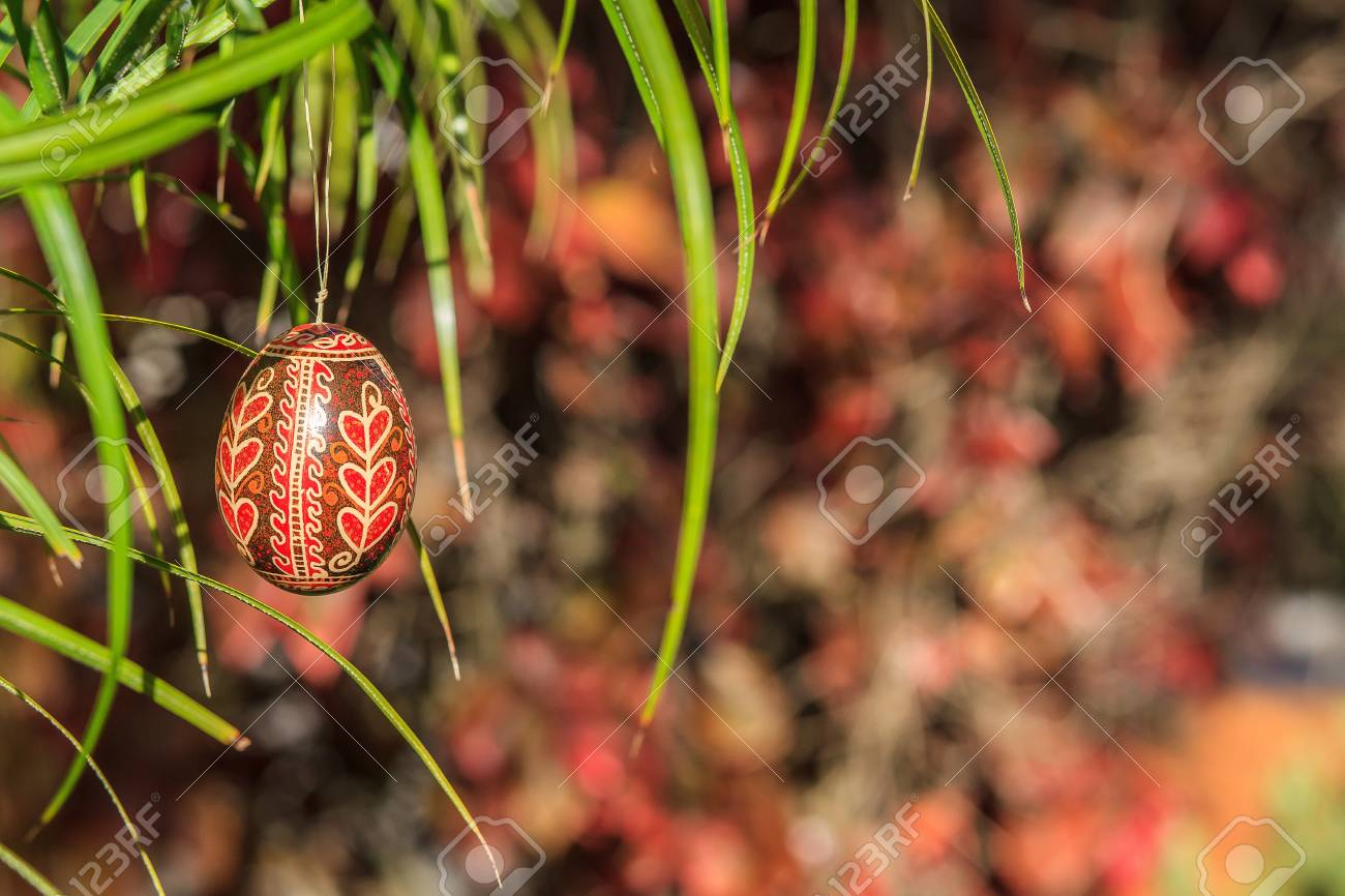 Easter egg hanging outside on a grass Stock Photo - 18961458