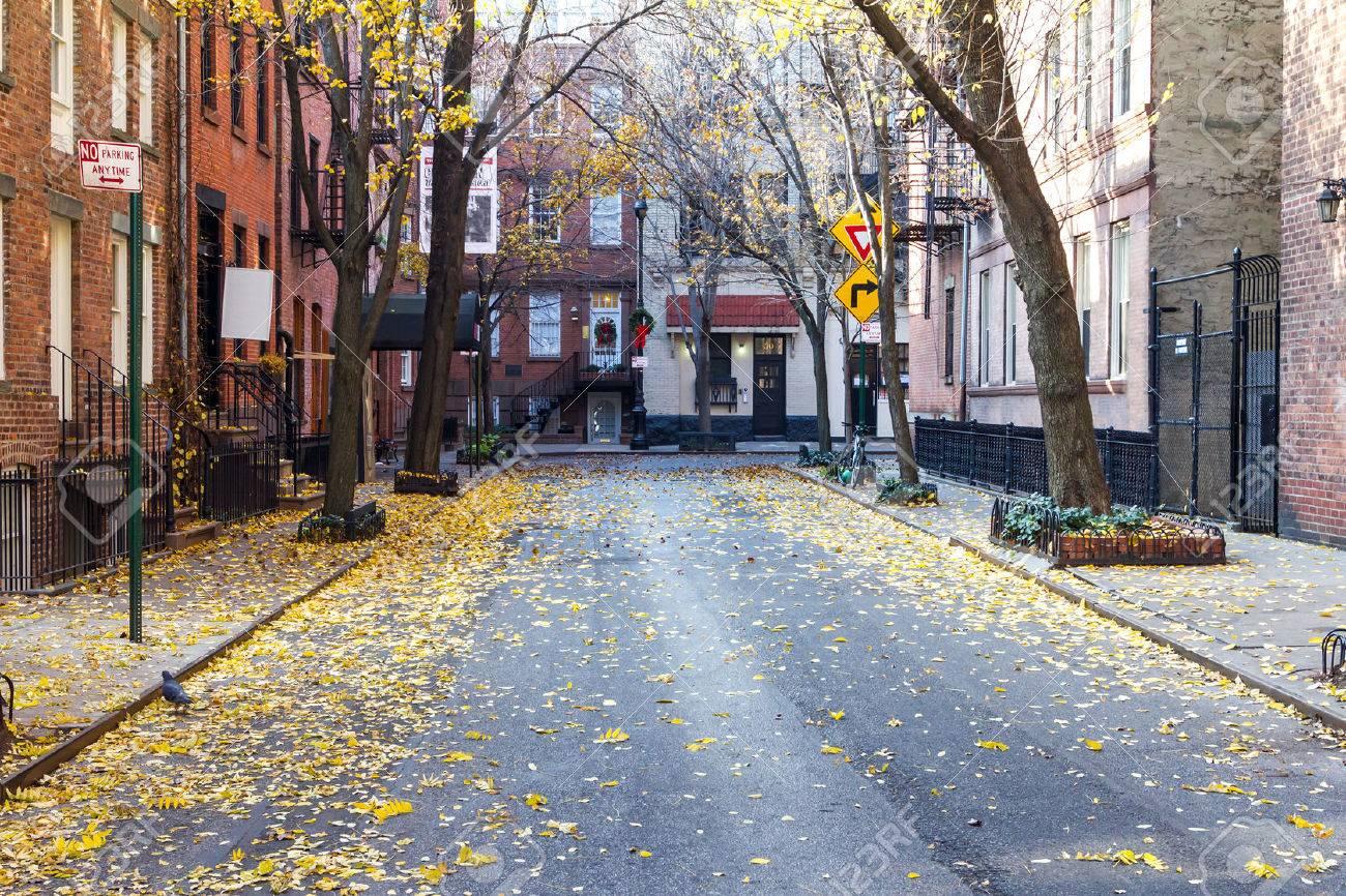 「street」の画像検索結果