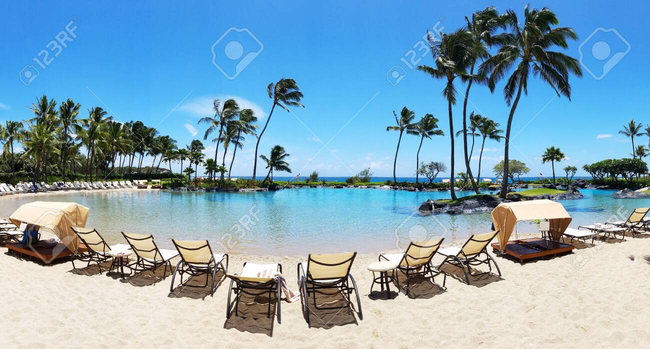 Tropical summer paradise scene with beach chairs lined up around..