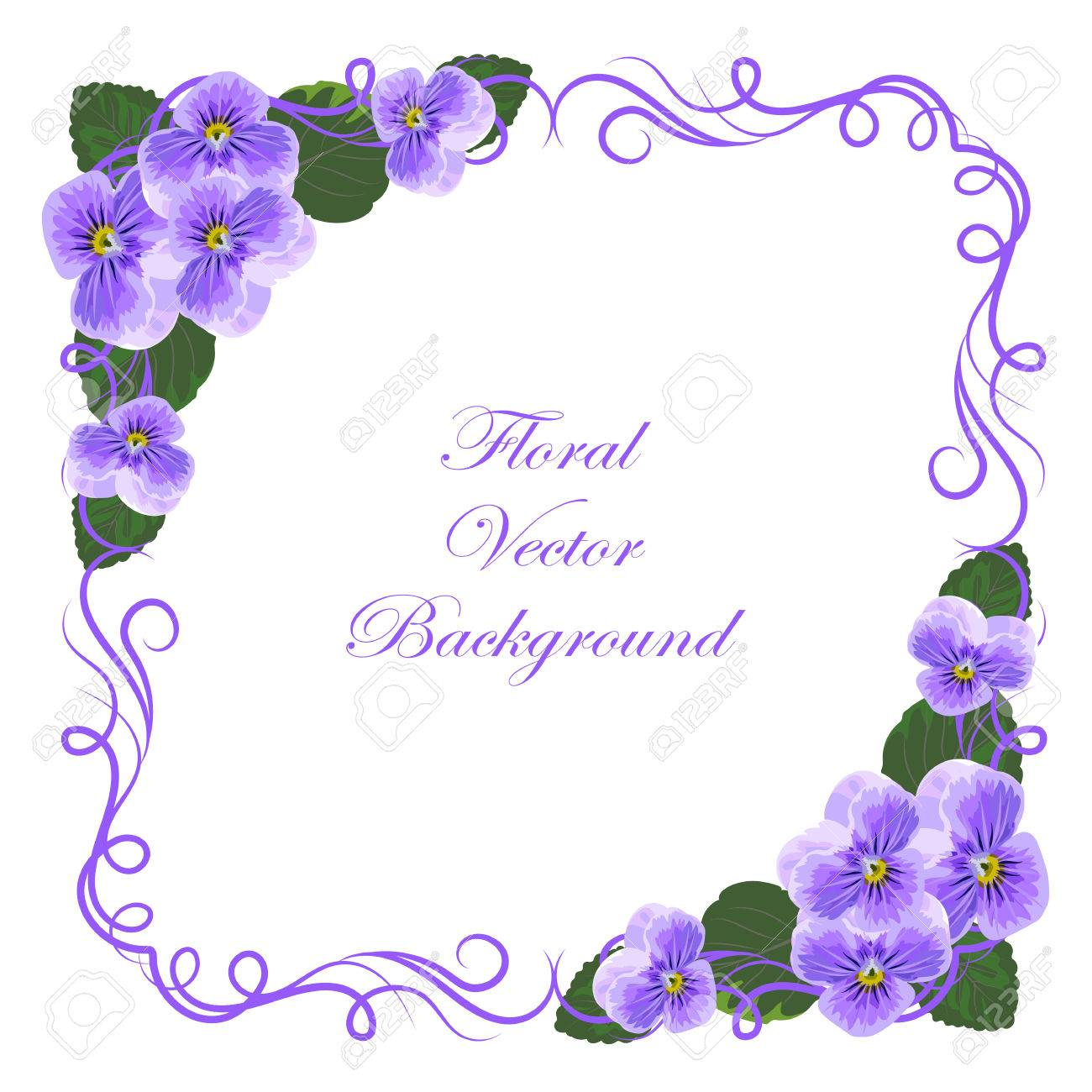 Floral Vector Background With Vintage Frame And Violet Flowers Royalty Free Cliparts Vectors And Stock Illustration Image 53388376