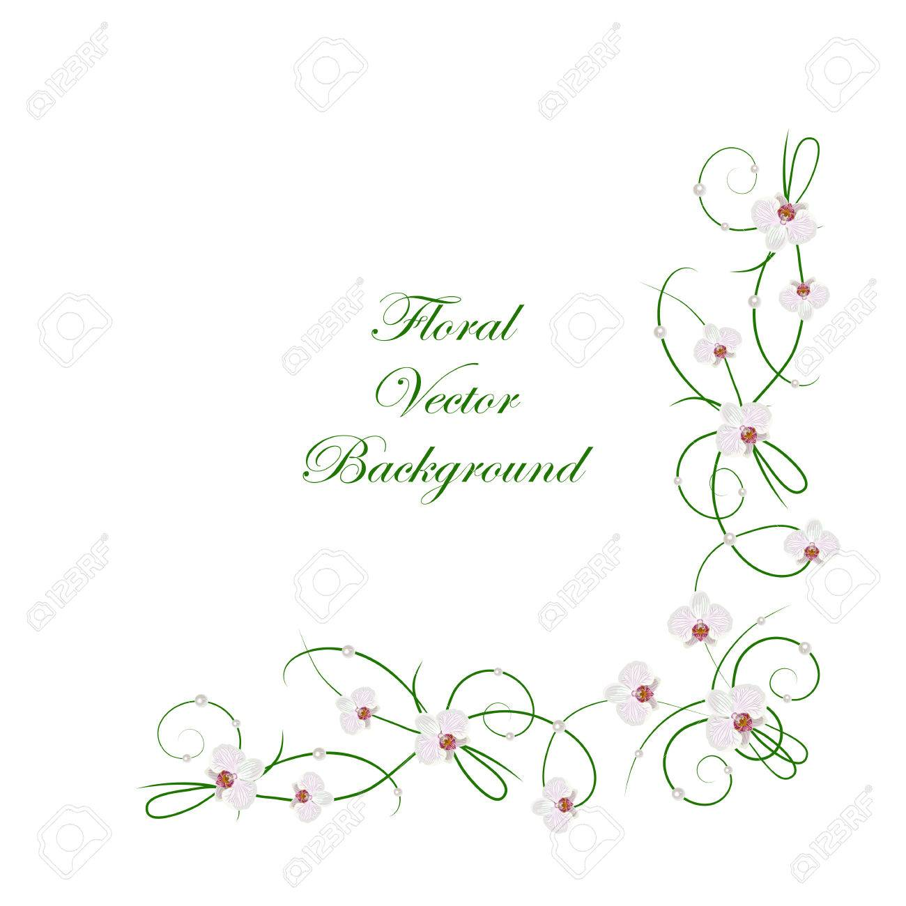Floral Vector Background. Corner Frame With White Ochid Flowers ...