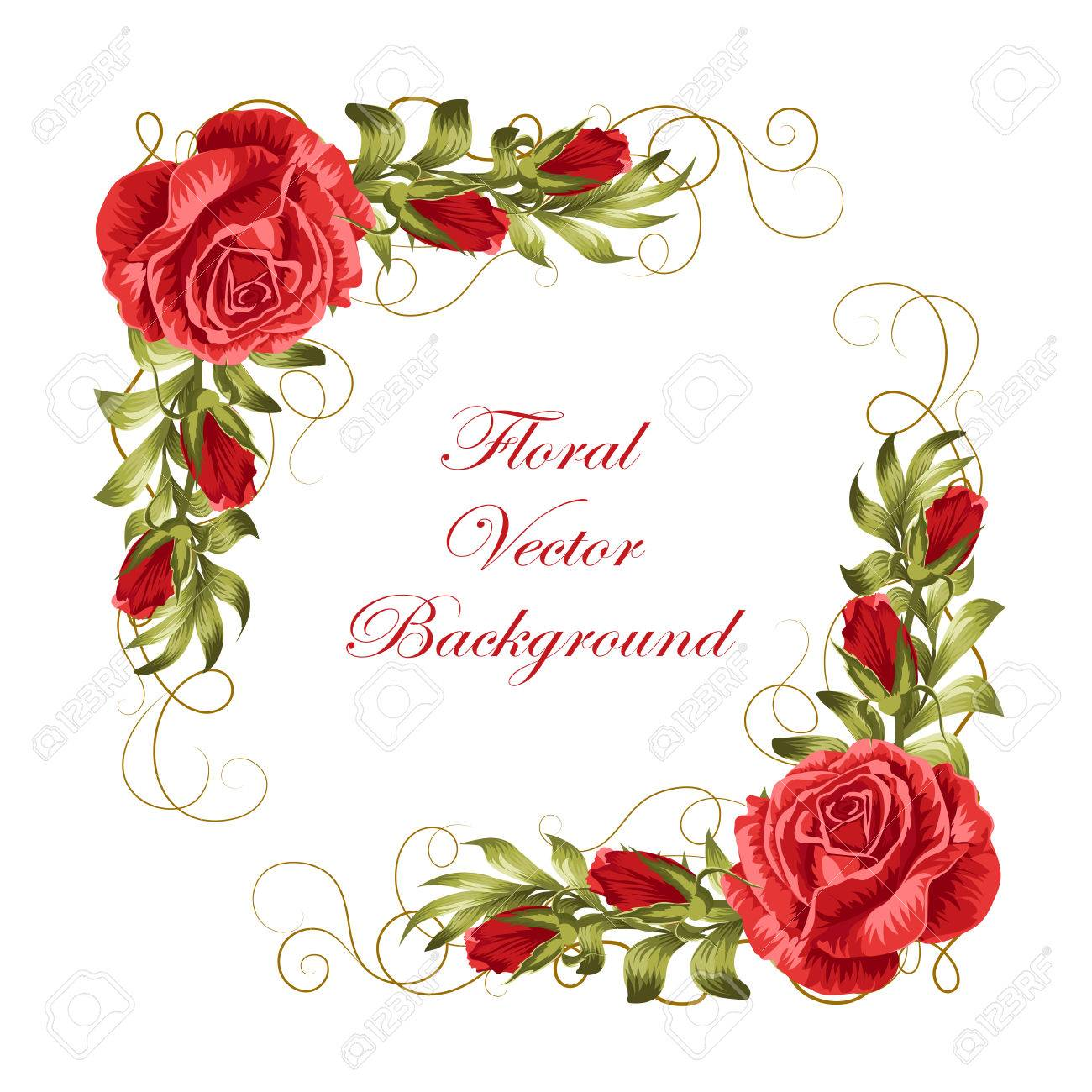 Beautiful frame with red roses and green leaves. Vector illustration isolated on white background. - 59050540