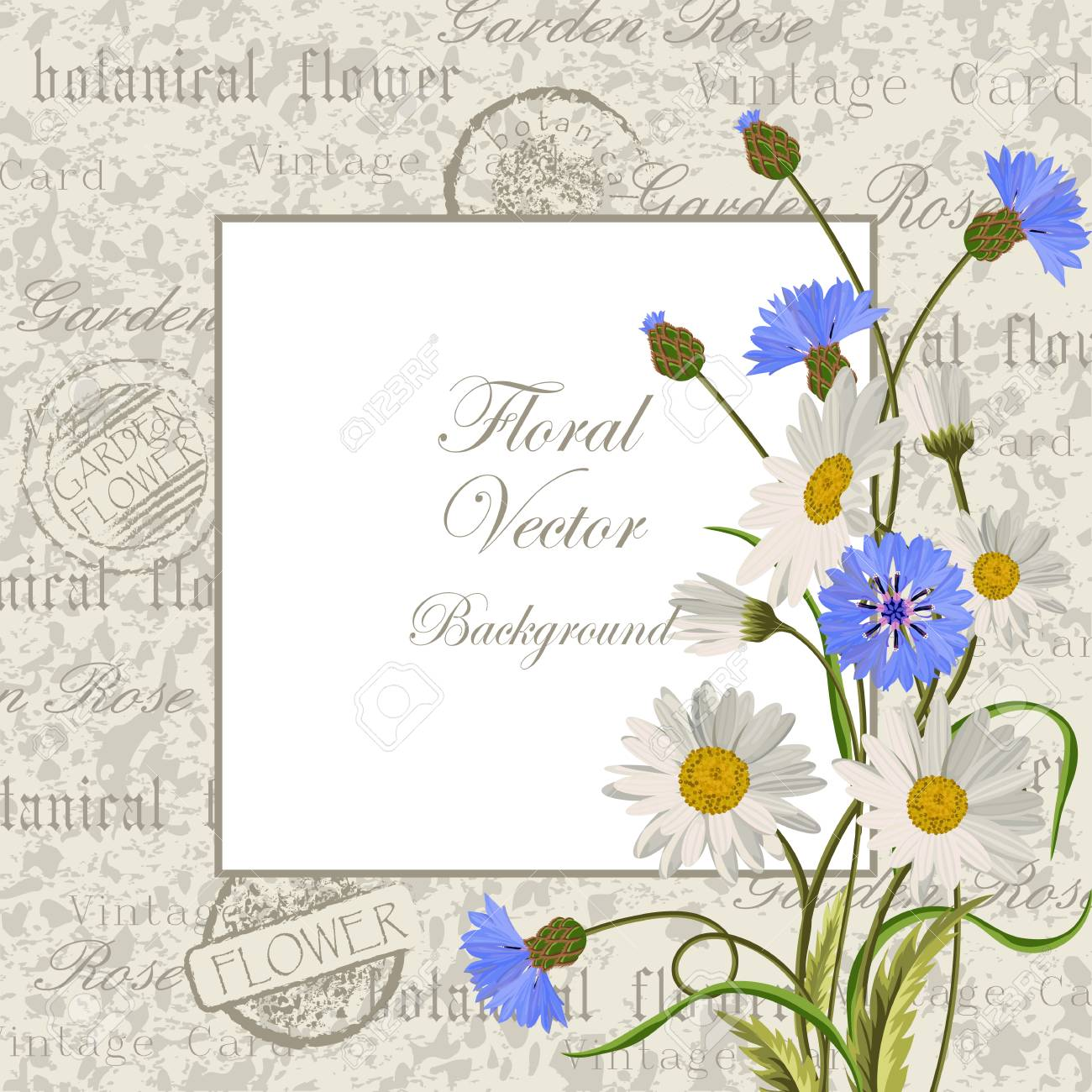 Illustration Of A Beautiful Vintage Frame With Flowers For ...