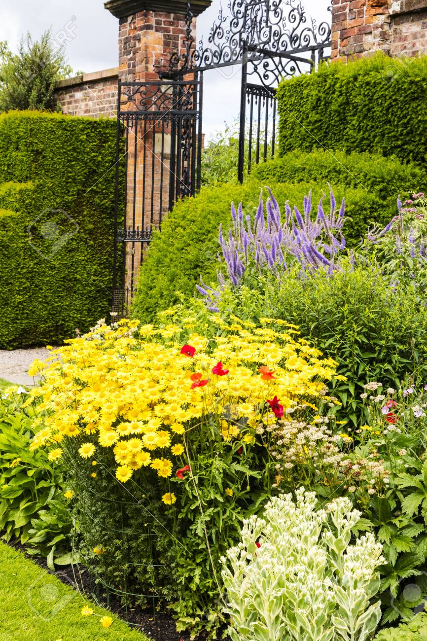 Herbaceous Border In A Well Tended Garden With Perennial Flowering