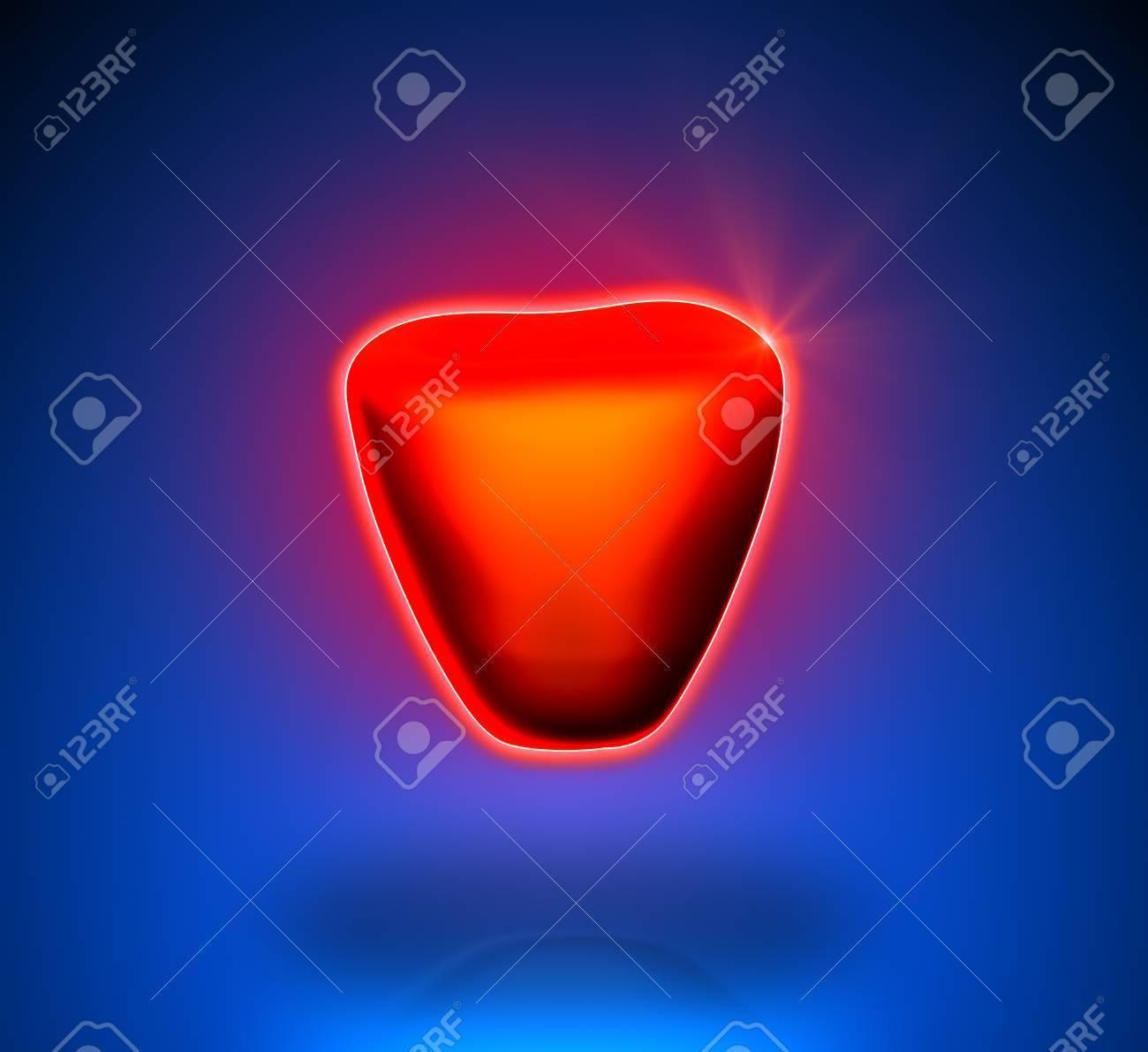 Prostate - Internal organs - blue background Stock Photo - 22971540