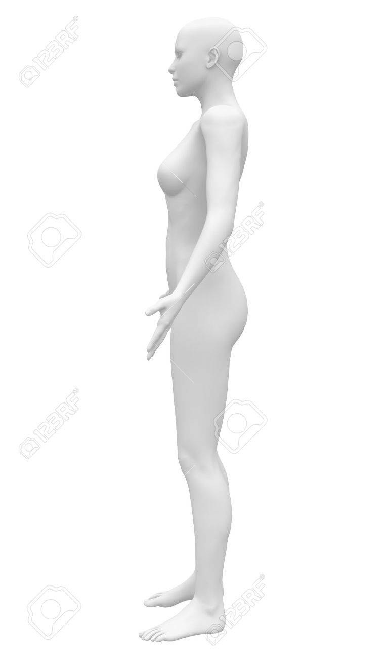 Blank Anatomy Female Figure - Side View Stock Photo, Picture And ...