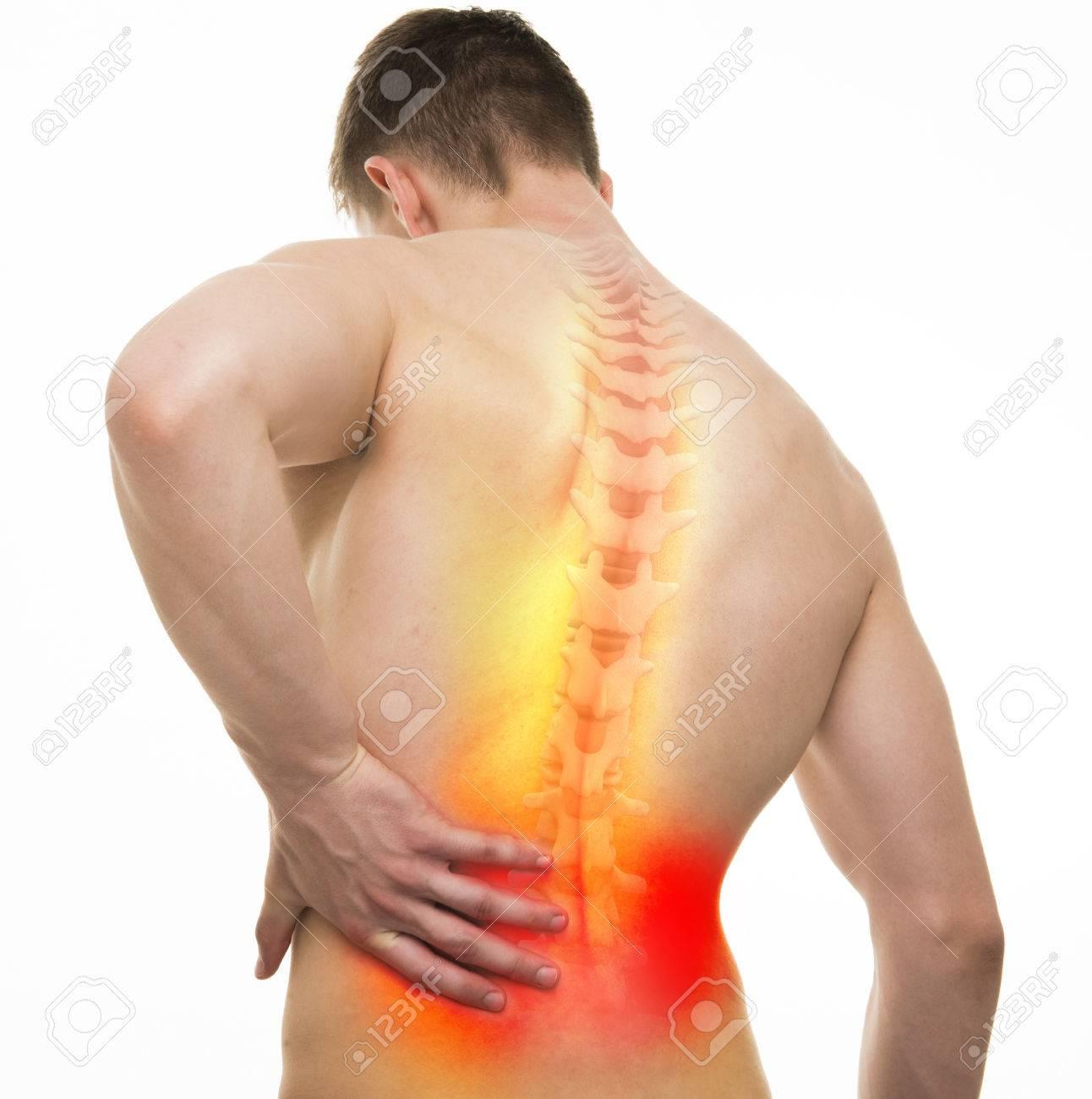 Espalda, Lesión, Macho, Anatomía - Estudio, Tiro, 3D, Ilustración ...