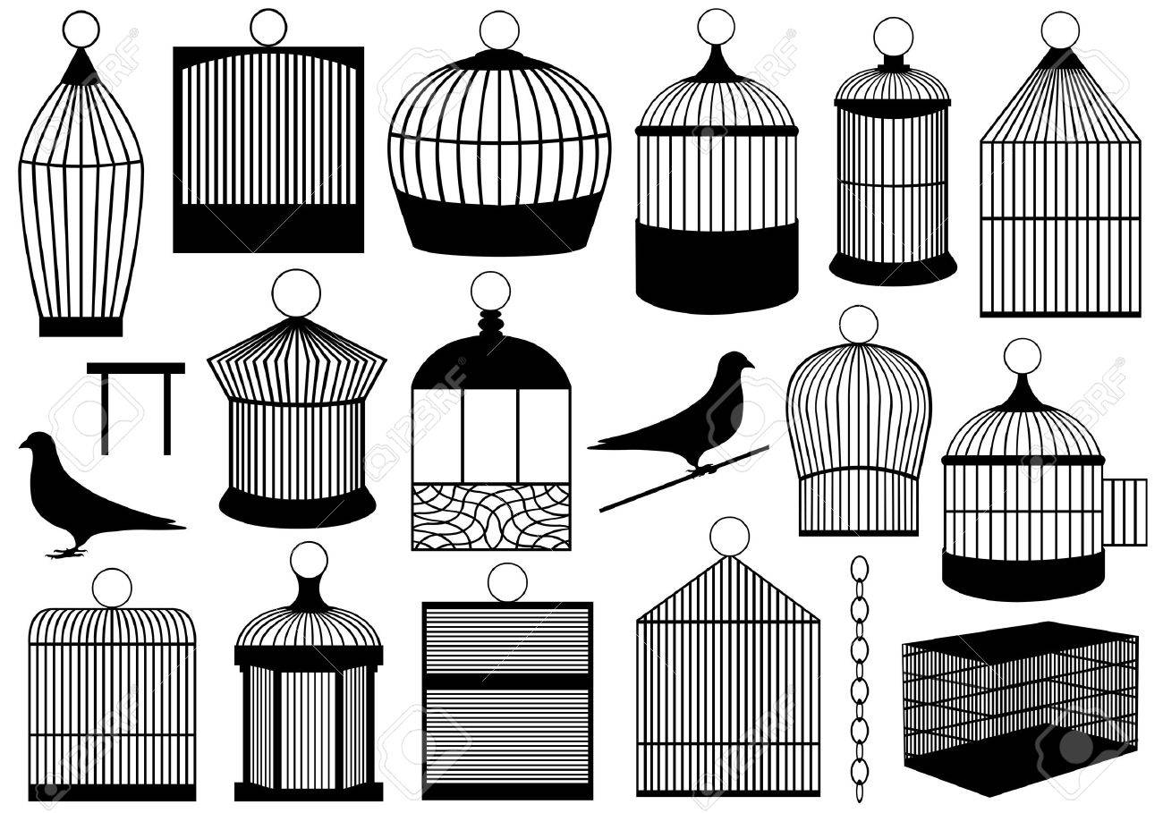 Bird cages isolated on white - 12931894