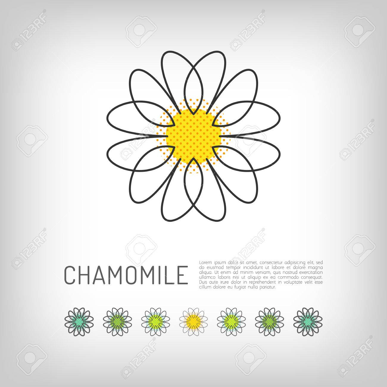 Chamomile Thin Line Art Icon Isolated Daisy Abstract Flower