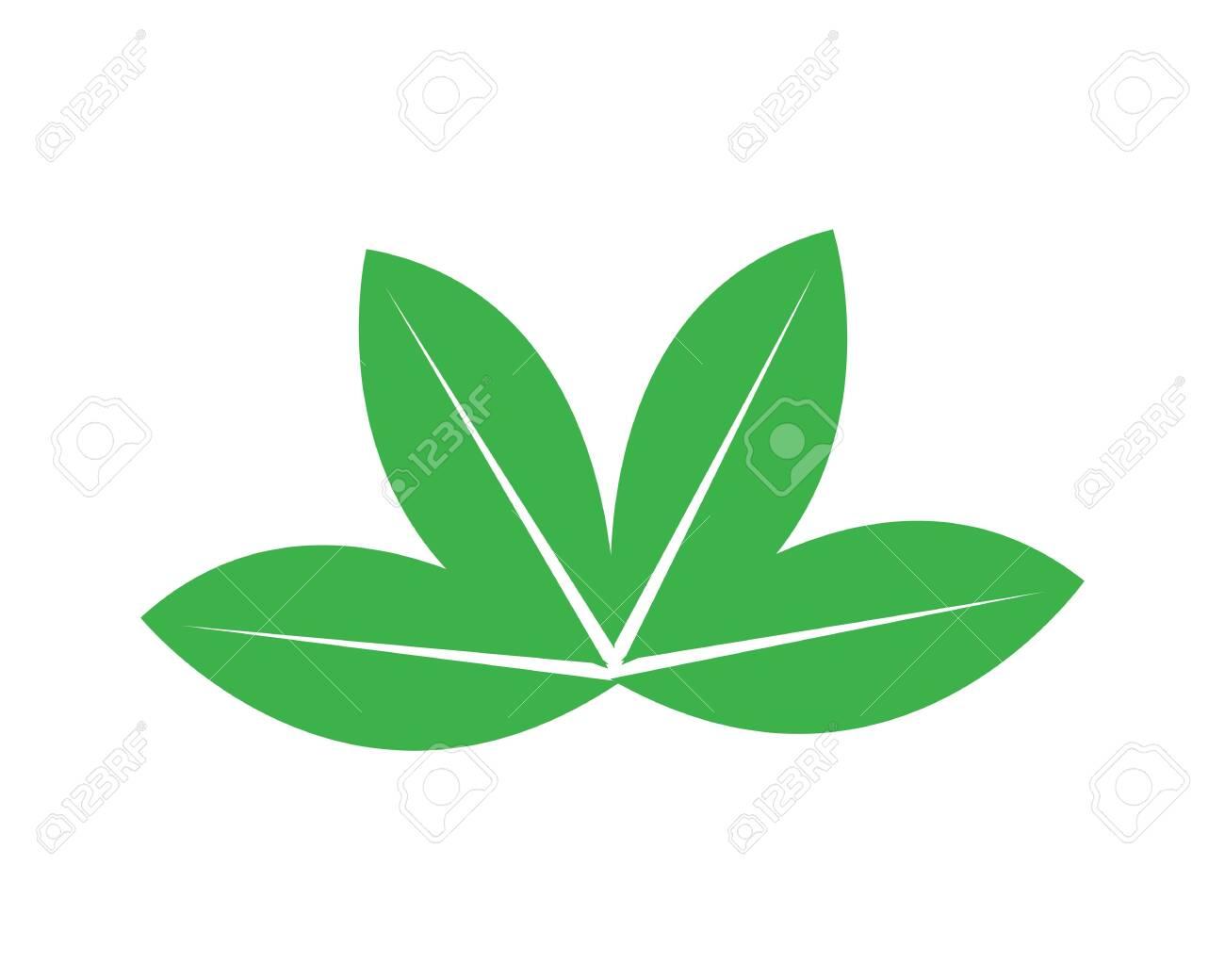 green leaf logo vector - 136601968
