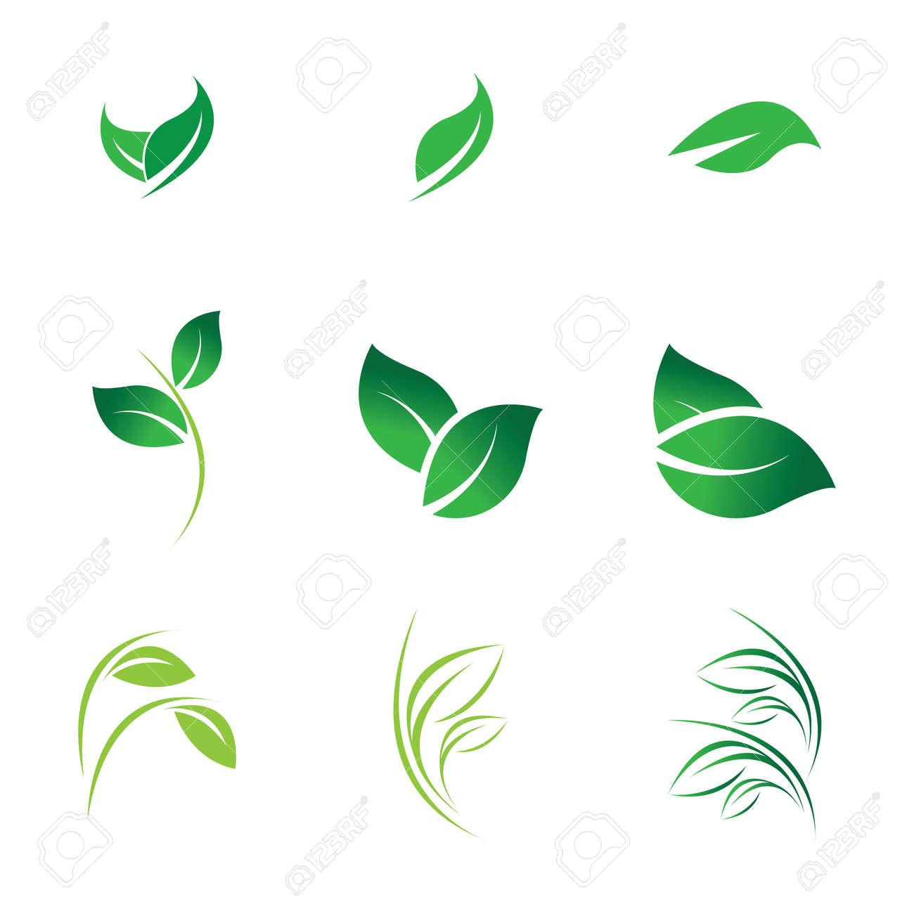green leaf logo vector - 166708669