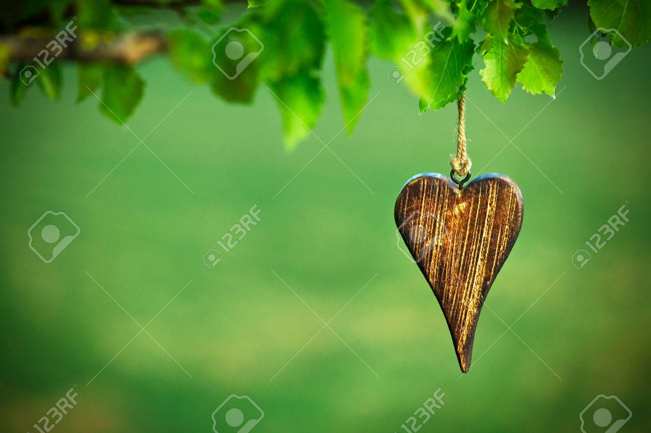 wooden shape of heart on natural green background with copy space Stock Photo - 46651597