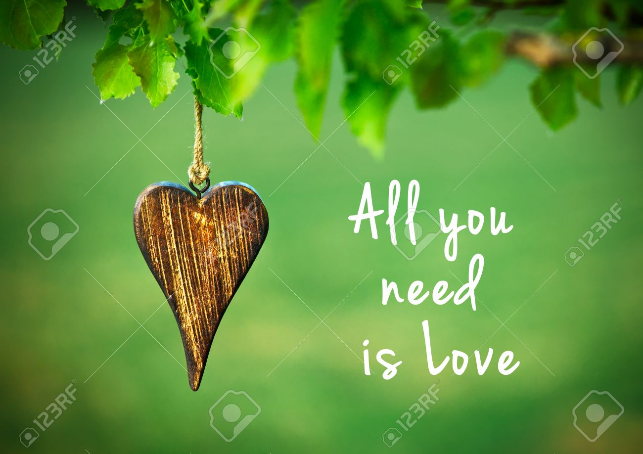 All you need is love - inspirational quote on natural green background with wooden shape of heart. Stock Photo - 46651298