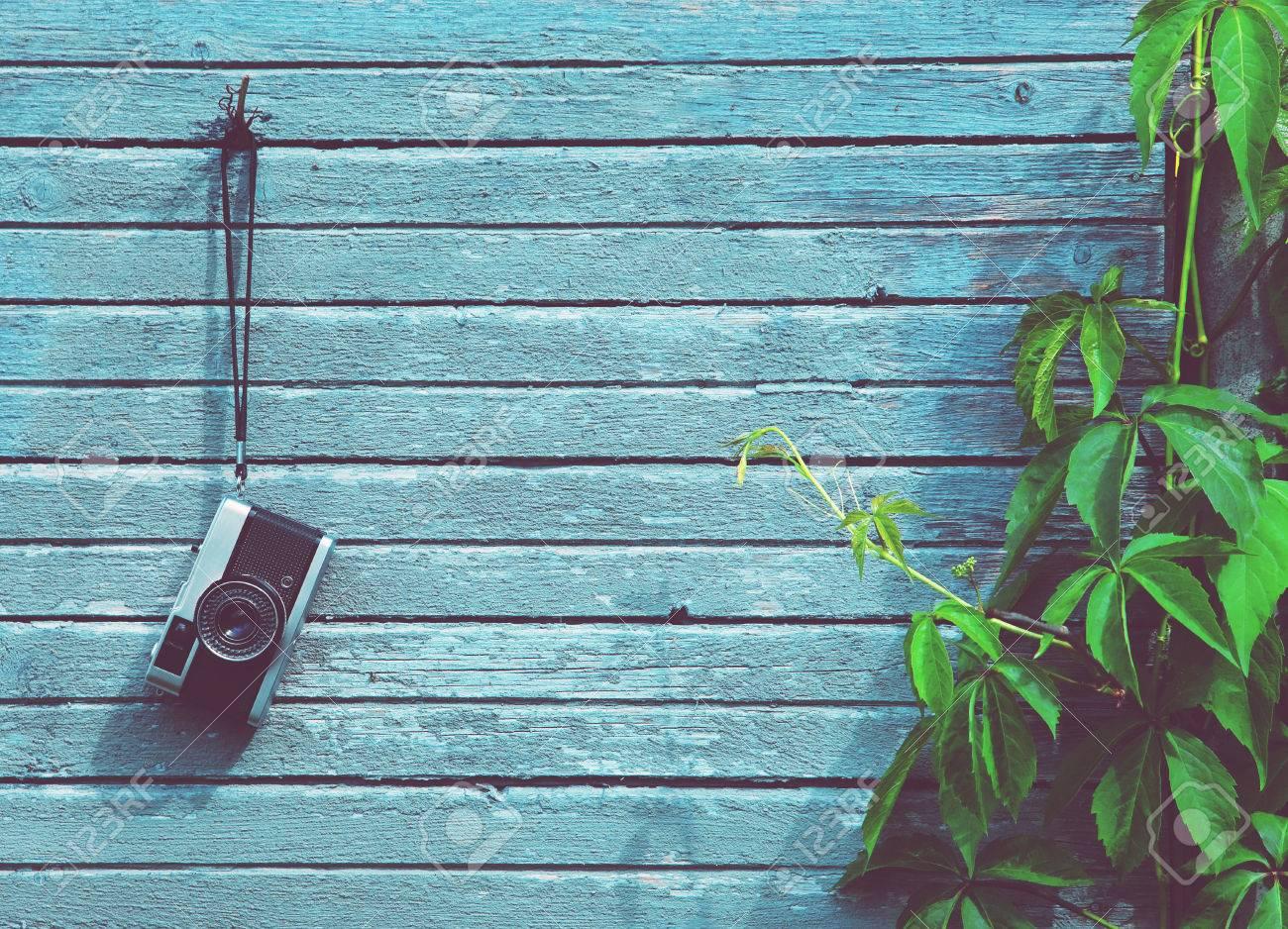 Retro Vintage-Kamera Auf Holz Natürliche Bretter Mit Grünpflanze ...