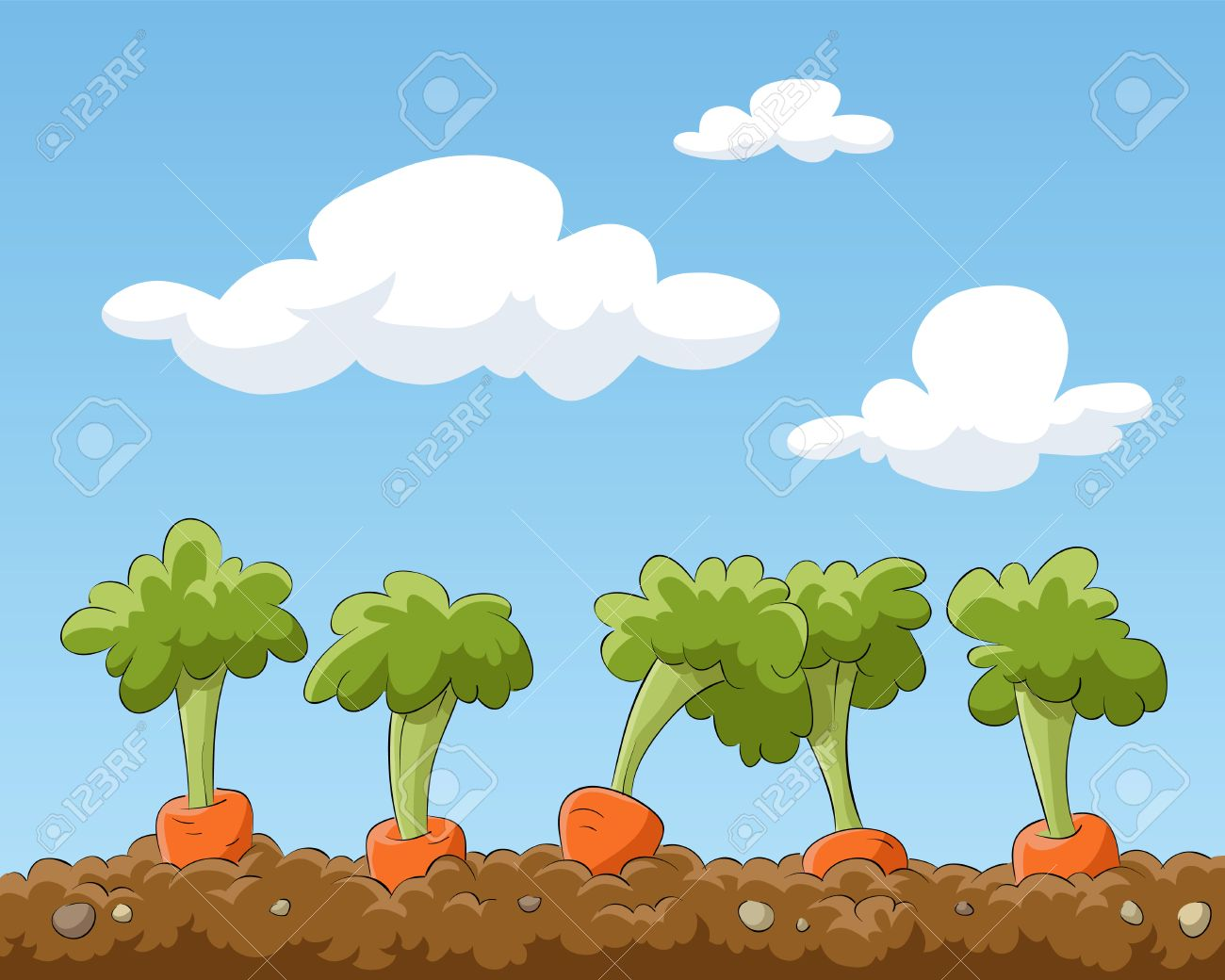 cartoon garden bed with carrots illustration royalty free cliparts
