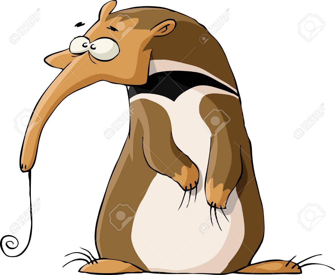 Ant-eater on a white background, vector illustration Stock Vector - 10554369