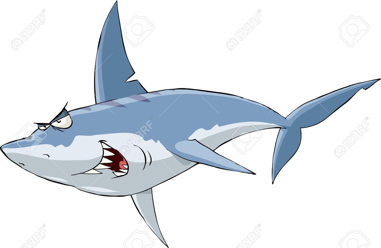 акула фото на белом фоне