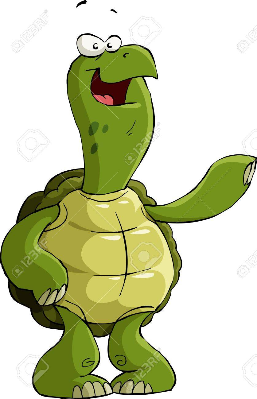 Turtle on a white background Stock Vector - 10571036