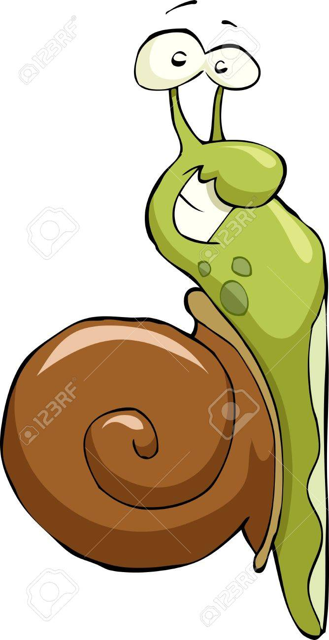 Snail on a white background, vector illustration Stock Vector - 12356570
