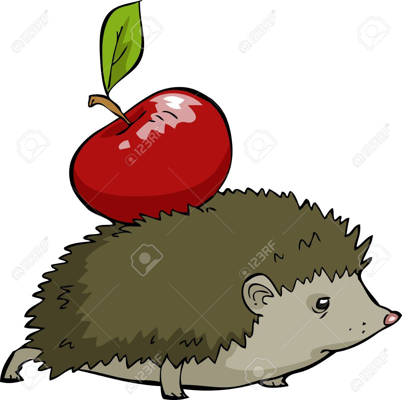 Hedgehog on a white background illustration Stock Vector - 17887331