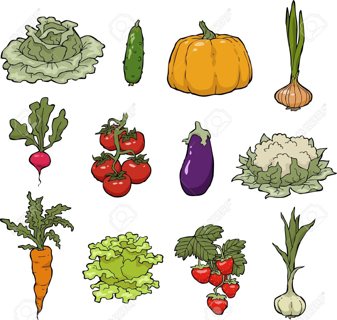 Set of vegetables on a white background vector illustration - 21138281
