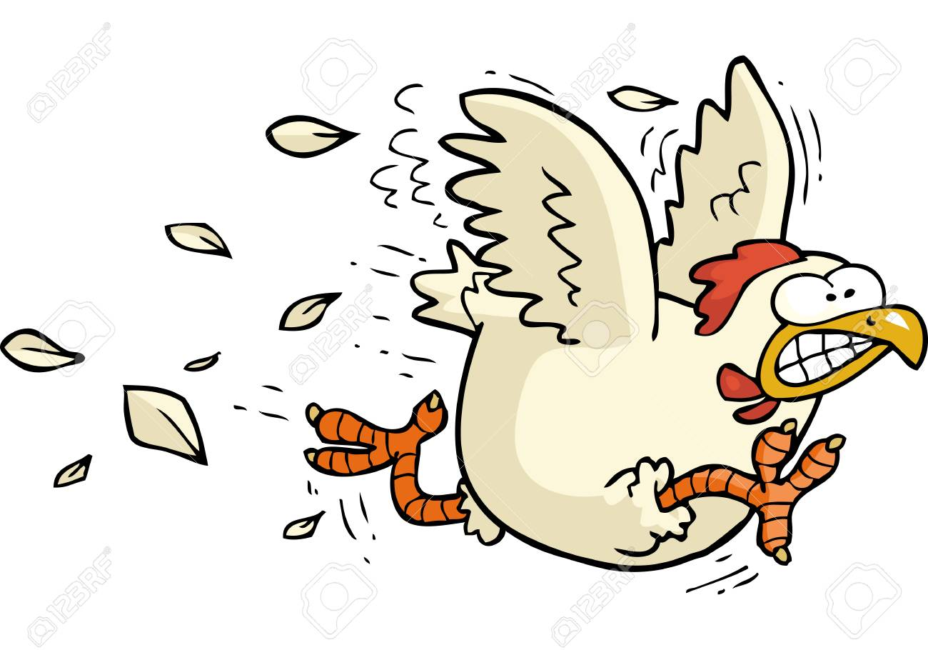 Cartoon doodle running chicken on a white background vector illustration - 99387409