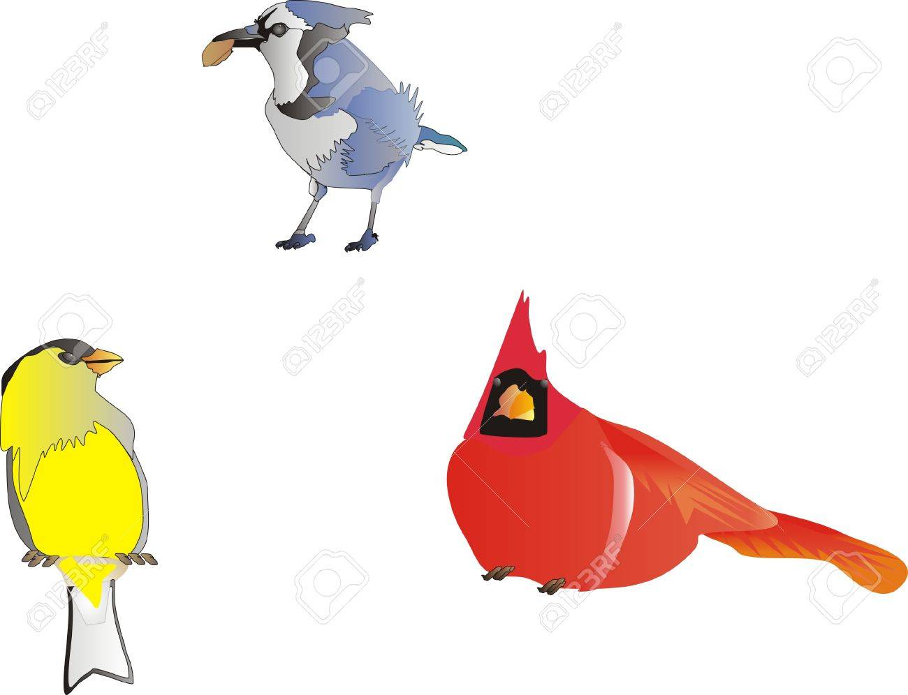blue jay goldfinch and cardinal clip art isolated royalty free