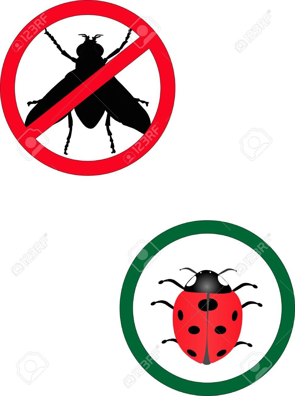 No Flies allowed and Lady bugs allowed signs Stock Vector - 4558378