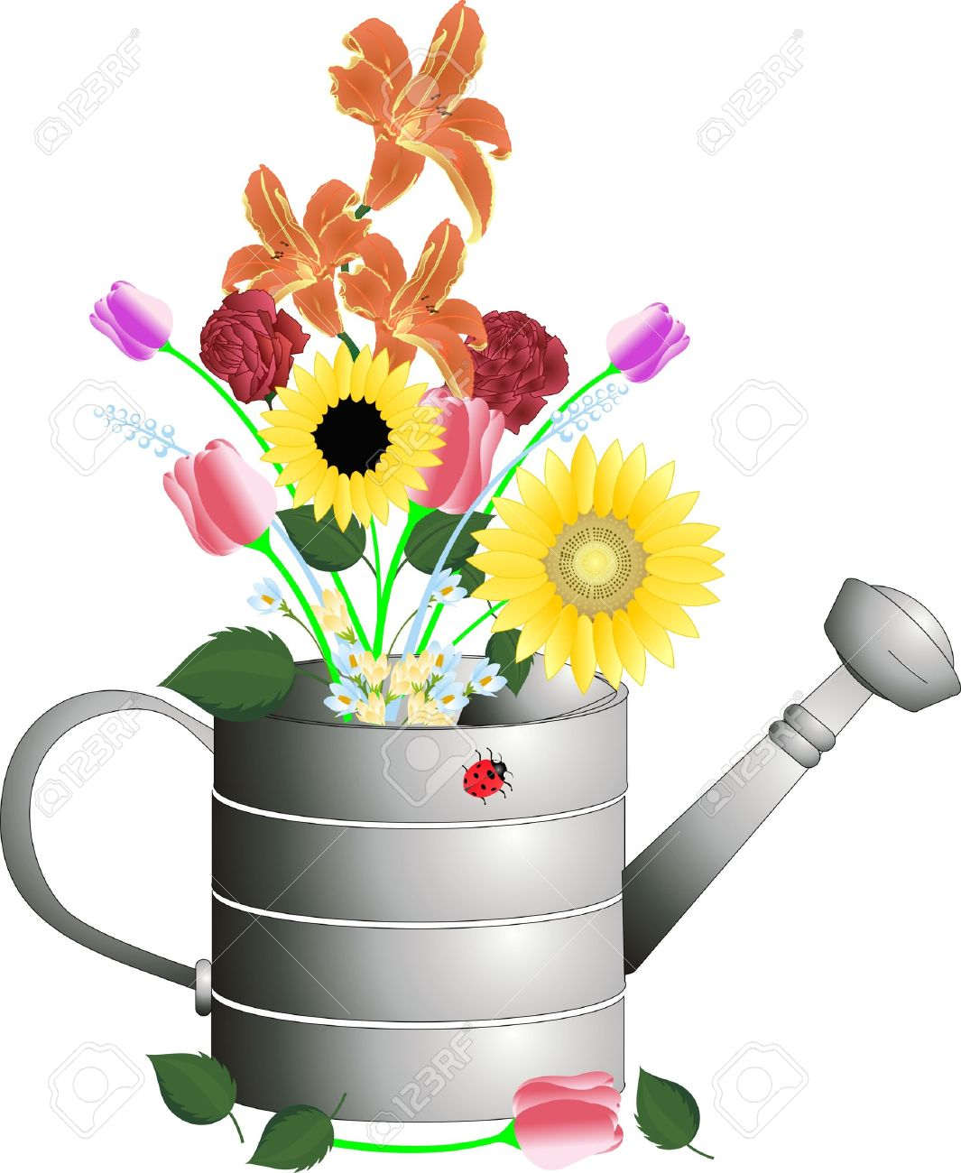 Watering Can with cut flowers in an arrangement illustration.. Stock Vector - 5263069