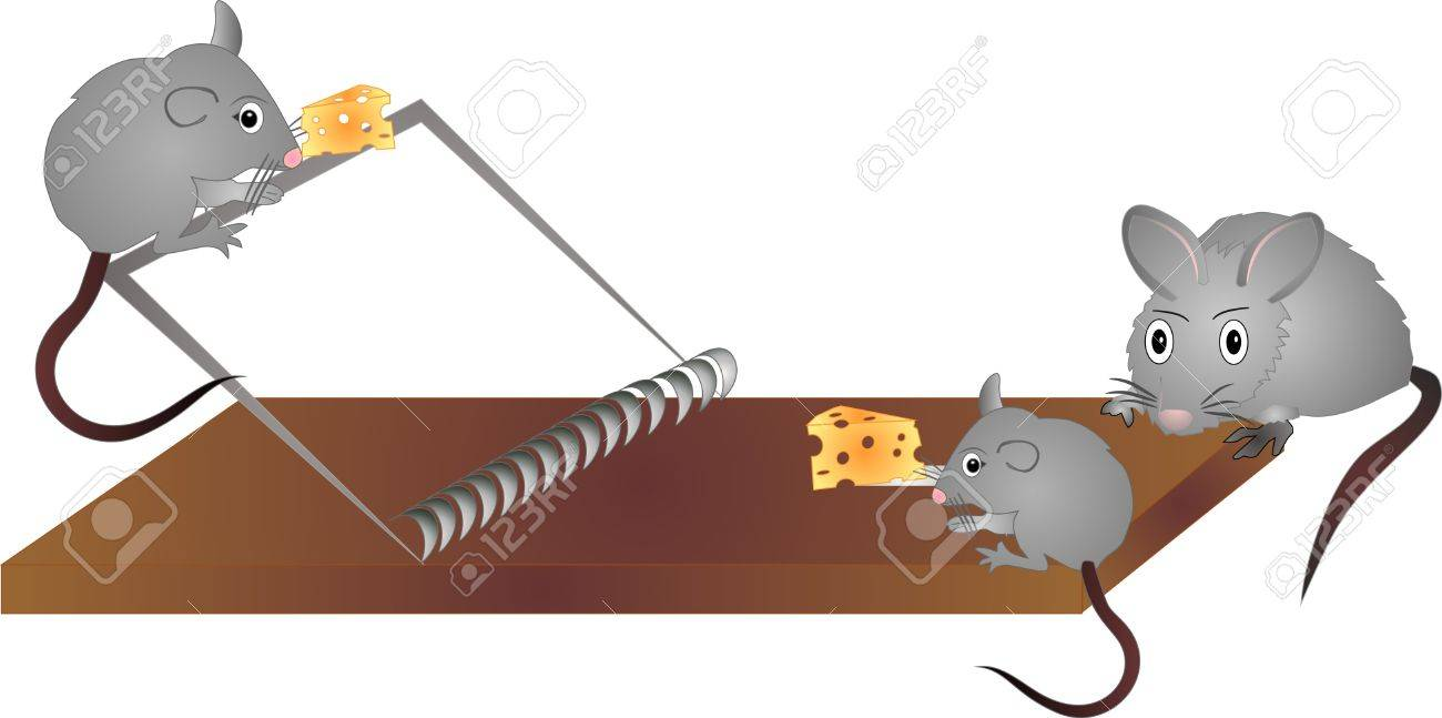 Clip Art of What Eat Mice