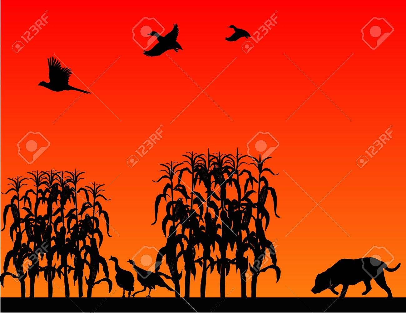 Hunting for wild turkeys, pheasants and ducks, in a corn field with the Labrador Retriever.. Stock Vector - 5766236