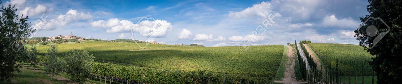 Tuscany panorama , Chianti region, Italy Stock Photo - 18140176