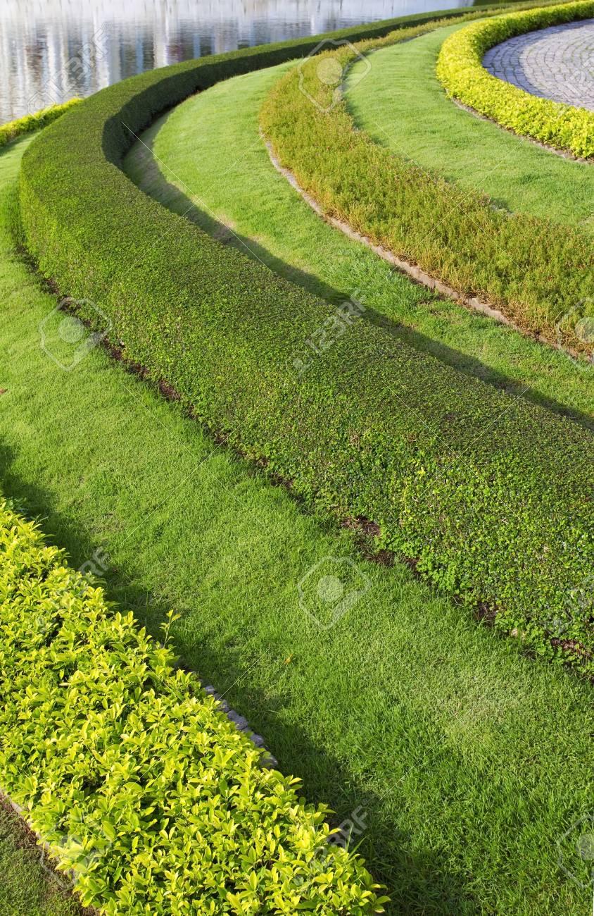 beautiful garden Stock Photo - 12979579