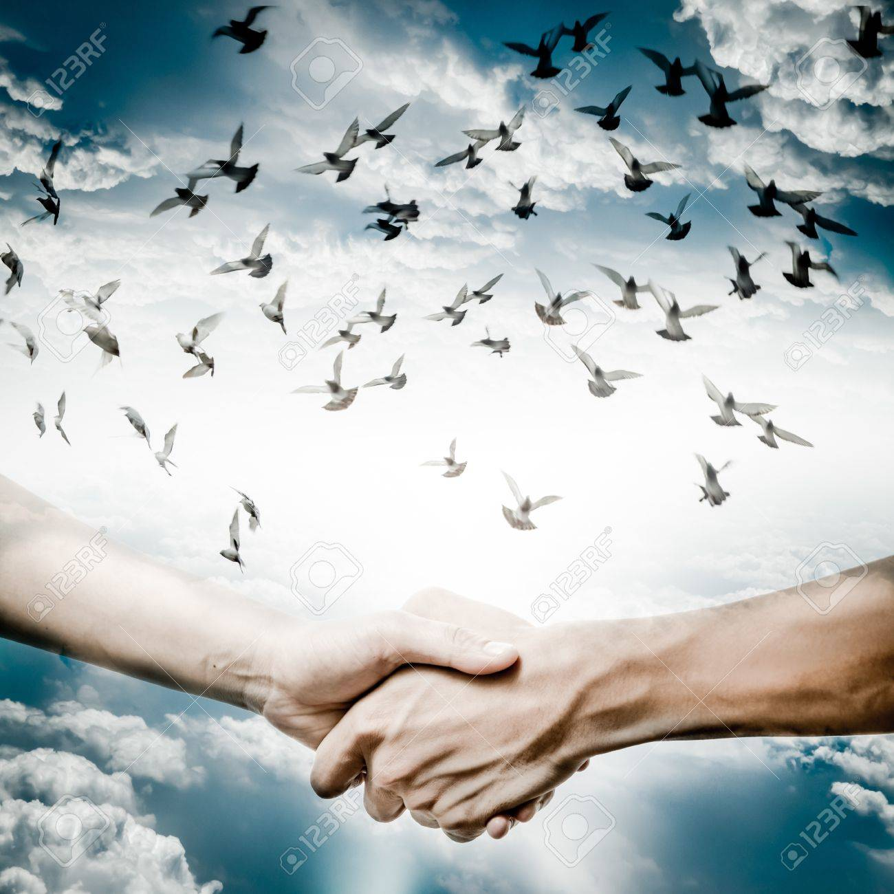 hand shake with dove flying on sky, business concept background. Stock Photo - 18283906